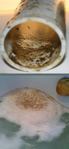 When a bather fills the tub and activates the system, normal flora, dirt, sloughed skin, body fluids, bath oils and additives, fecal matter and soap scum circulate through the system and buildup inside the plumbing lines as biofilm.